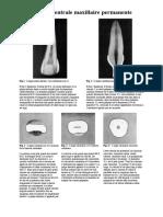 anato_dentaire2an_planche_anatomie-interne.pdf