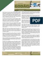 CEPEA-ALGODÃO-JAN-2019_0951598001549388894.pdf