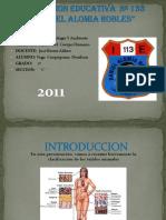 diapositiva de los tejidos del cuerpo humano.pptx