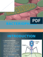 BACTERIOPHAGE.pptx