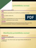3 Distribucion Normal 2006