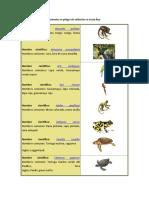 AnimalesenpeligroCR