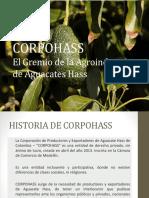 7.-CORPOHASS-Presentaci¾n-al-Asociado.pptx