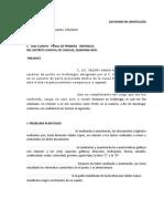 Formulario Dictamen en Grafologia Penal
