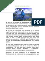 MPORTANCIA DEL AGUA.docx