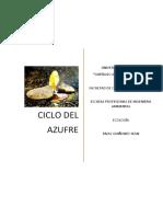 Informe-ciclo-del-azufre.docx