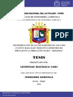 Machaca_Cari_Leonidas.pdf