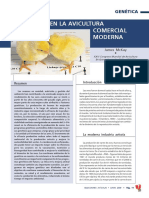 4767-la-genetica-en-la-avicultura-comercial-moderna