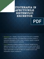 sistemul excretor.pptx