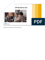 93_Intro_11_Overview_IntroSAPB1_ES.pdf