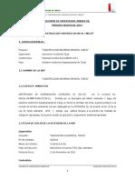 Informe Supervisión Ambiental Primero