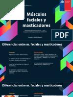 Músculos faciales y masticadores.pptx