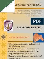 Seminario Patologia Especial 2 Segmento - Cancer de Testiculo
