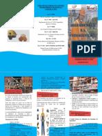 RS_TRIPTICO_GRUPO 11.pdf