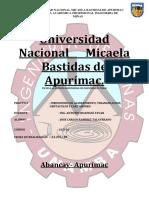 PIMER INFORME ALINEACION.docx