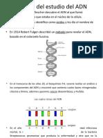 1. Historia del ADN.ppt