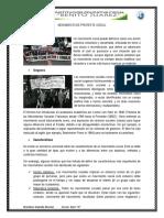 MOVIMIENTO DE PROTESTA SOCIAL.docx