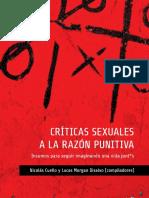 criticas sexuales a la razón punitiva.pdf
