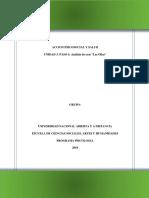 paso4-Analisis-deCaso-borrador