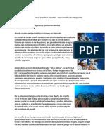 Arrecife de coral.docx