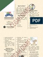 pamflet diare.docx