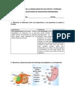 PRIMER EXAMEN DE LA UNIDAD DIDACTICA DE PASTOS Y FORRAJES.docx