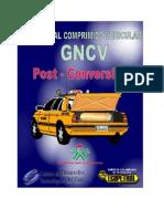 Manual de Post Conversion gnv