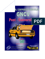 Manual de Post Conversion gnv