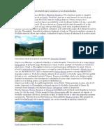 Документ (5).docx
