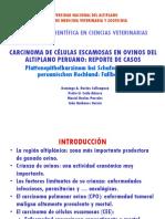 CARCINOMA DE CELULAS ESCAMOSAS PRESENTACION.pptx