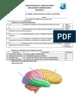 BIOLOGIA 2 cuestionarios.docx