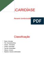 ASCARIDÍASE - REV (1).ppt