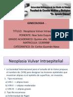 Presentación29.pptx