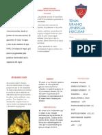 triptico URANIO.docx