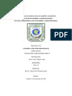 INFORME MICROONDAS.docx