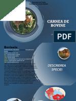 Rotaru Nicoleta Carnea de bovine.pptx
