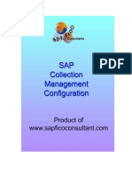 Collection_Management_Config sarva.pdf