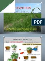 fotosintesis (1).pptx