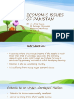 ECONOMIC ISSUES OF PAKISTAN & SOLUTIONS.pptx