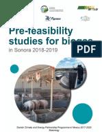 pre-feasibility_study_sonora_eng.pdf