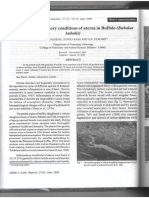 Study on inflammatory conditions of uterus in Buffalo (Bubulus bubulis)