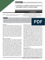 In Vitro Fertilization of Buffalo Follicular Oocytes by Intravaginal Culture in Bovine Vagina