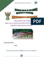 DIAGNOSTICO DE COMPETITIVIDAD BMS MULTIETNICOS