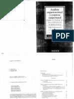Análisis Organizacional y Empresa Unipersonal - Aldo Shelemenson