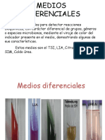 4.1.-Medio-3.ppt