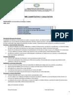 Informe cualitativo 3105  2019