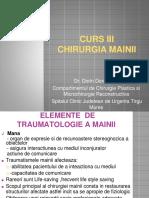 Curs 3- Chirurgia Mainii-2
