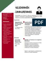 Curriculum Vitae Nelson Ramon Canahuire Ramos