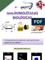 Bioquímica - Biomoléculas