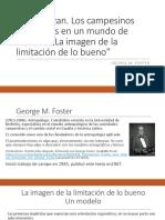 la limitacion de lo bueno_Foster